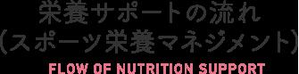 栄養サポートの流れ